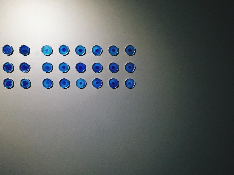 ©2012, Nurit Bar-Shai, Objectivity [Tentative]: Soundscape