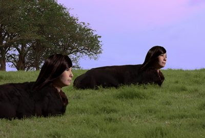 2014-2018 Knox Lamassu Kentaurosu Wagyu