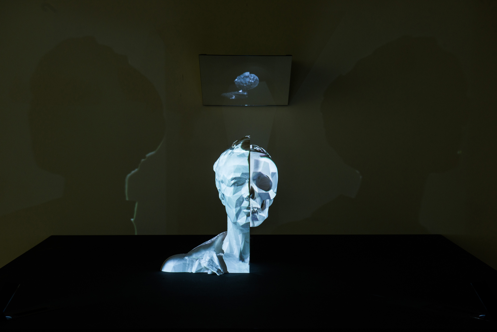 ©2015, Jane Prophet, Neuro memento mori: a portrait of the artist contemplating death