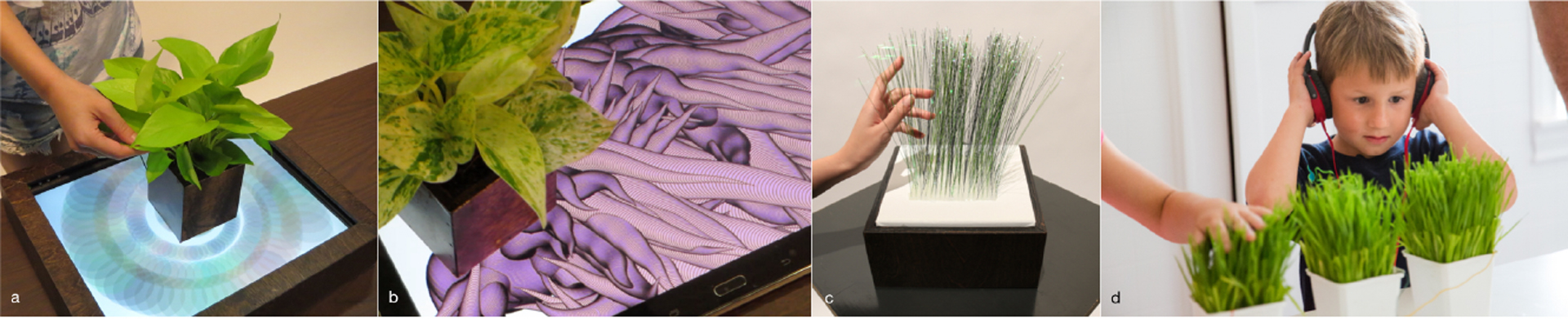 ©ISEA2016: 22nd International Symposium on Electronic Art, Annie Sungkajun, Tiffany Sanchez, Jinkyo Suh, and Jinsil Hwaryoung Seo, Touchology: Exploration of Empathetic Touch Interaction with Plants for Well-being