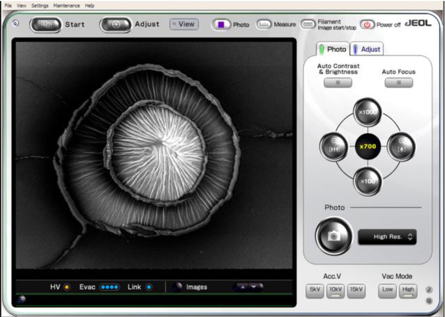 ©ISEA2016: 22nd International Symposium on Electronic Art, Anastasia Tyurina, Exploring the Medium: The Indexical Function of Artistic Photomicrography Made by the Scanning Electron Microscope
