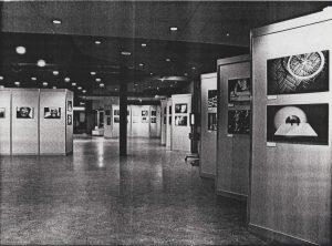 FISEA Art Show