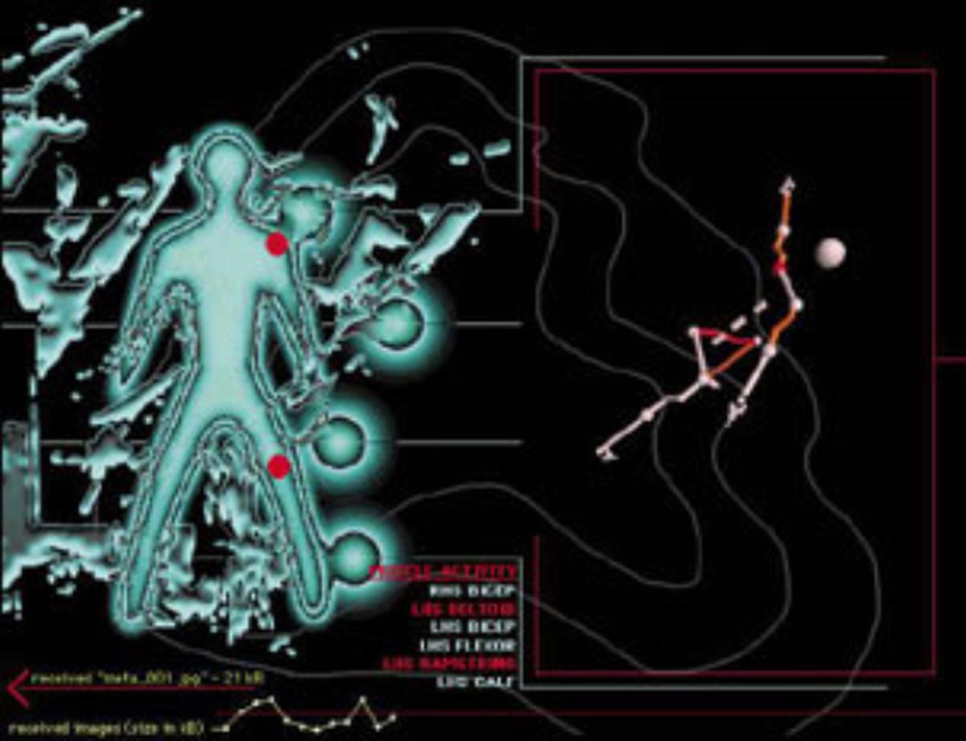 ©, Jeffrey Cook, Sam de Silva, and Gary Zebington, Metabody: From Cyborg to Symborg