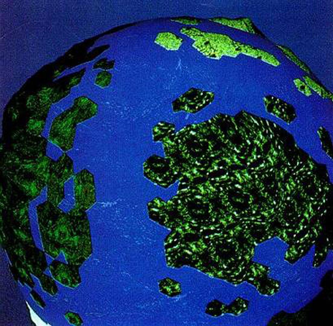 ©, Myron W. Krueger, Small Planet