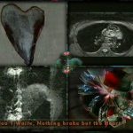 Nothing Broke but the Heart