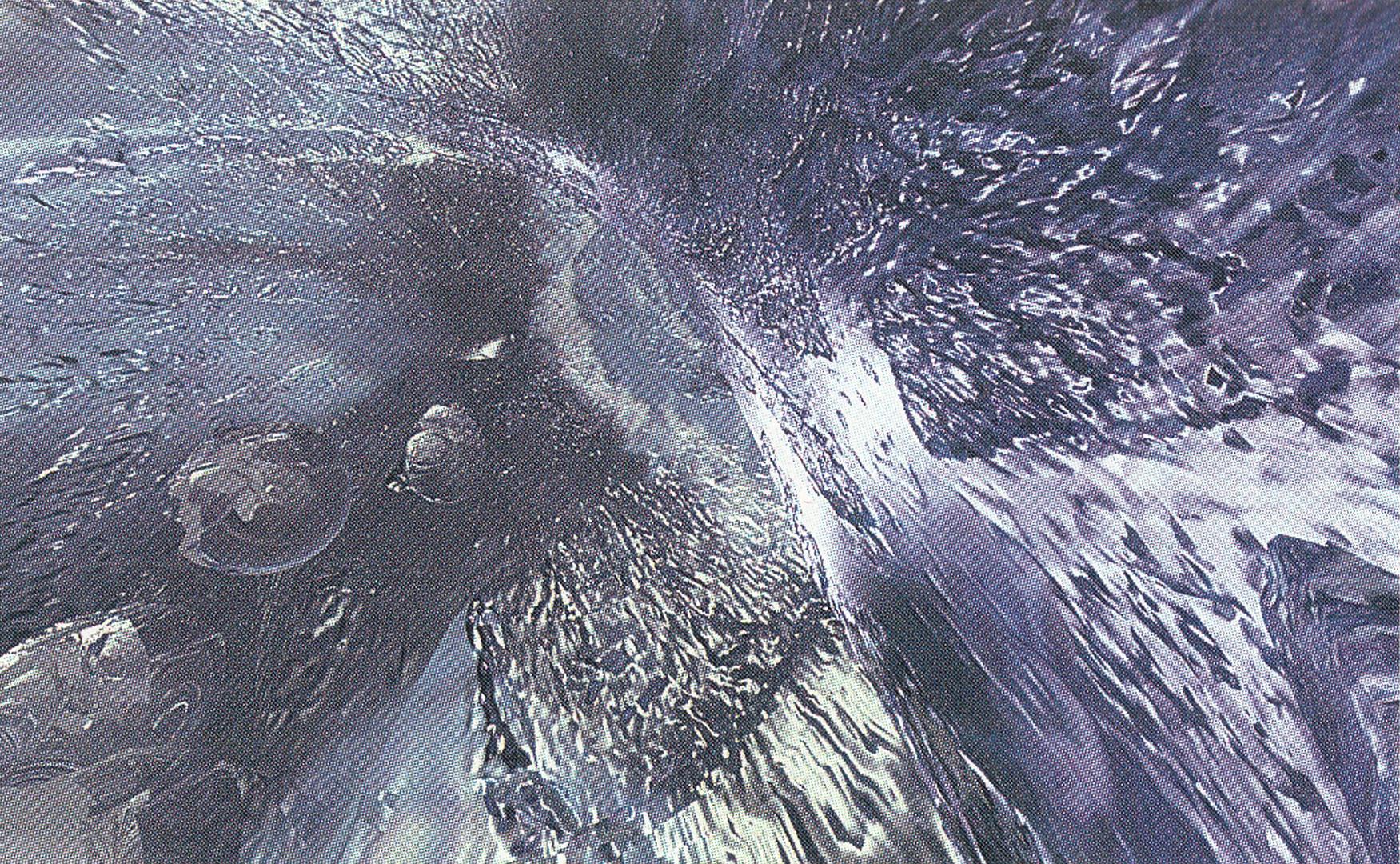 ©1993, Char Davies, Drowning (Rapture)