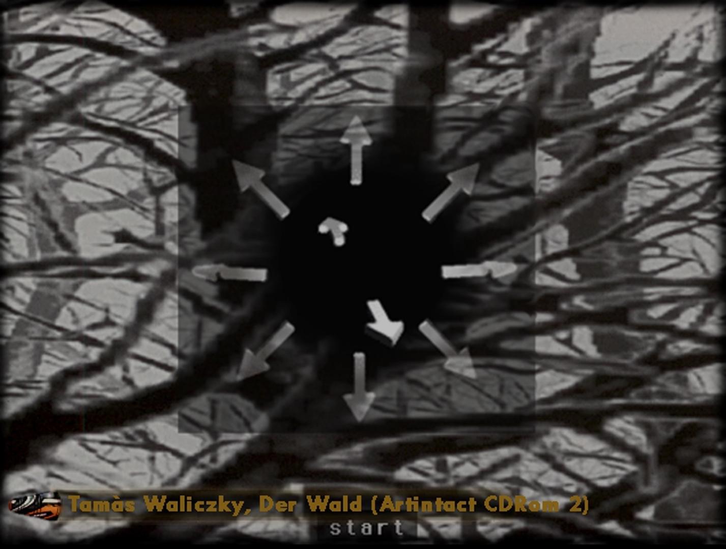 ©, Tamás Waliczky, Der Wald (Artintact CD Rom 2)