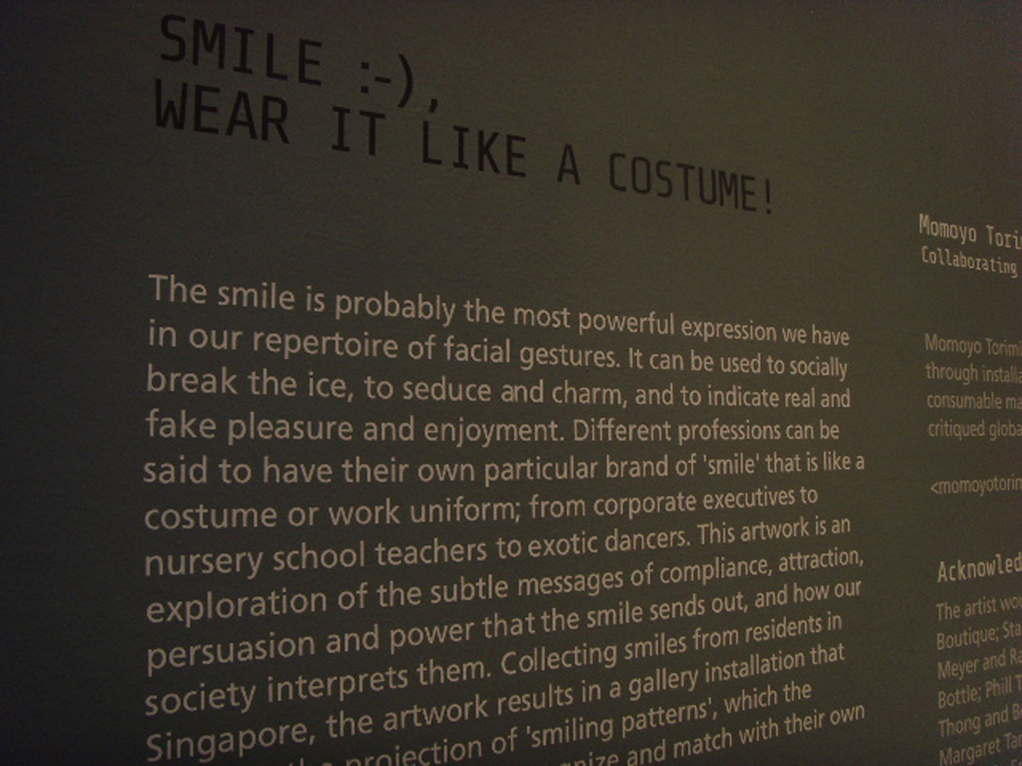 ©, Momoyo Torimitsu, Smile :-), Wear It Like a Costume!