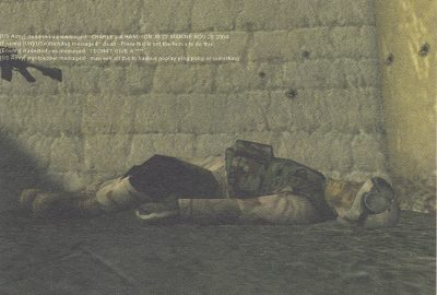 2013 DeLappe dead-in-iraq