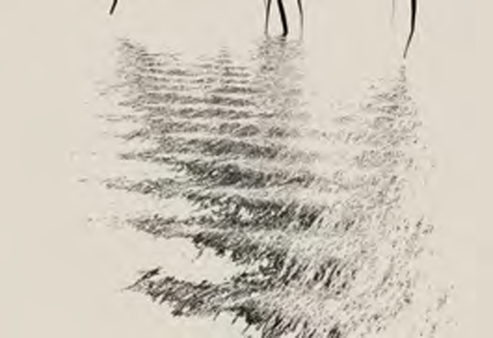 ©2011, Peter Hardie, ripple_grey_one