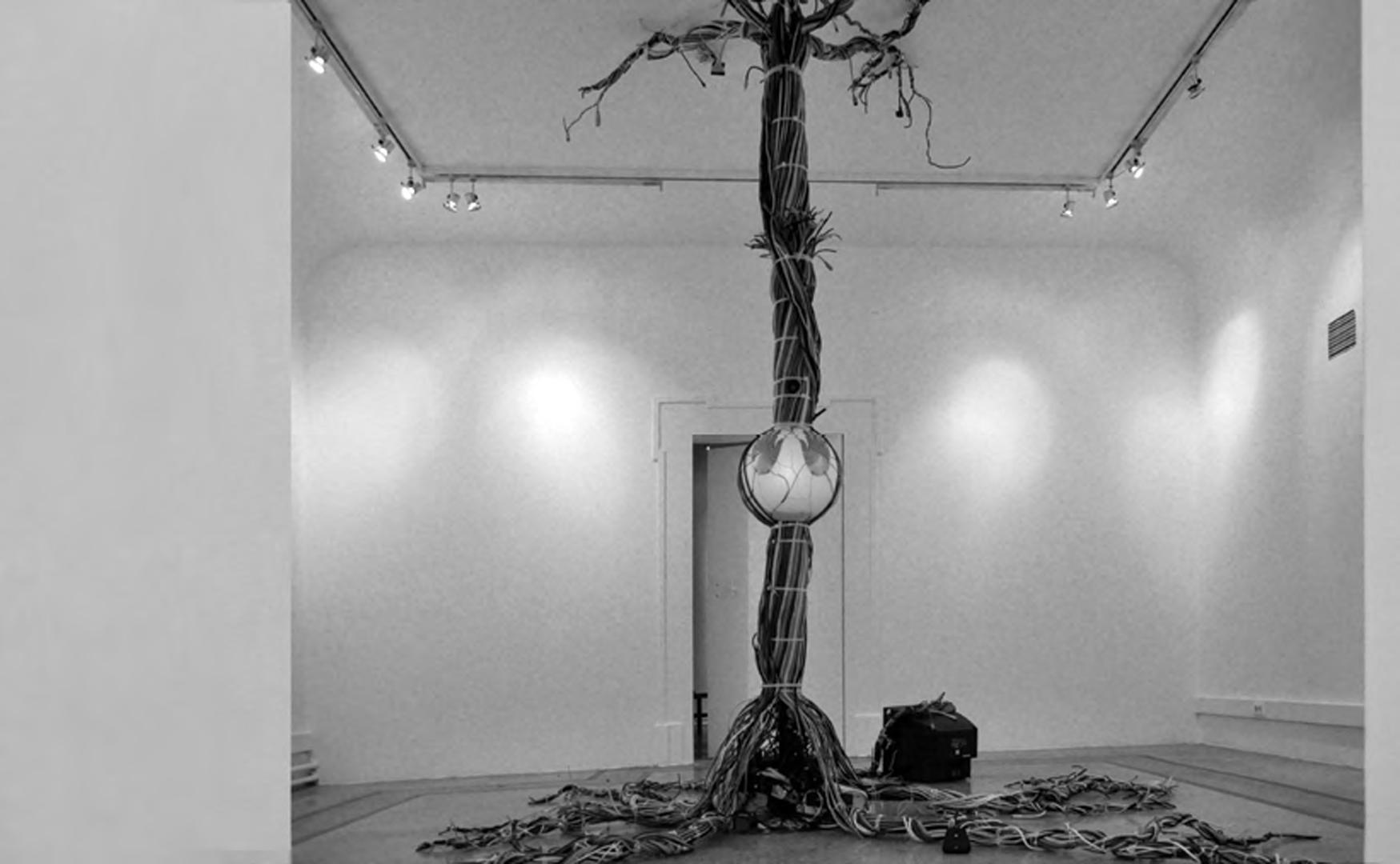©, Sean Montgomery, Diego Rioja, and Mustafa Bagdatli, Emergence
