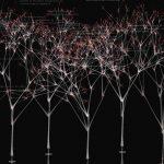 (x)trees