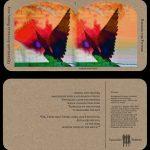2014 Ekeberg Krista Birding the Future