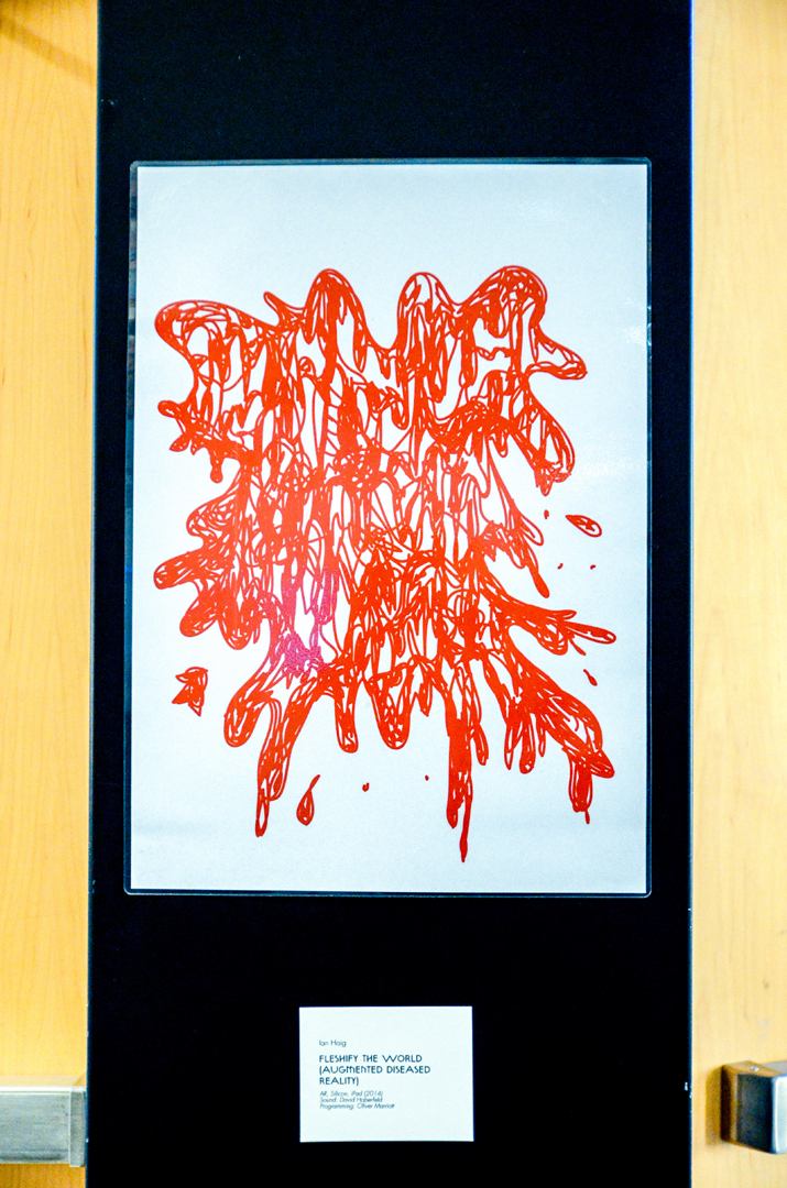 ©2014, Ian Haig, Fleshify The World (Augmented Diseased Reality)