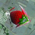 Extemporary Land Art on Google Earth