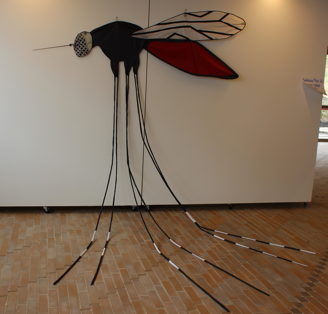 ©, Alejandro Valencia Tobón, Experiments at the interface between art, anthropology and science to re-design health campaigns against mosquito-borne diseases