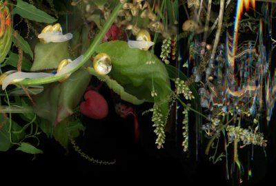 2020 Melançon Grass, Scrub, Woodland, Fauna (Seven Sisters National Park Series)
