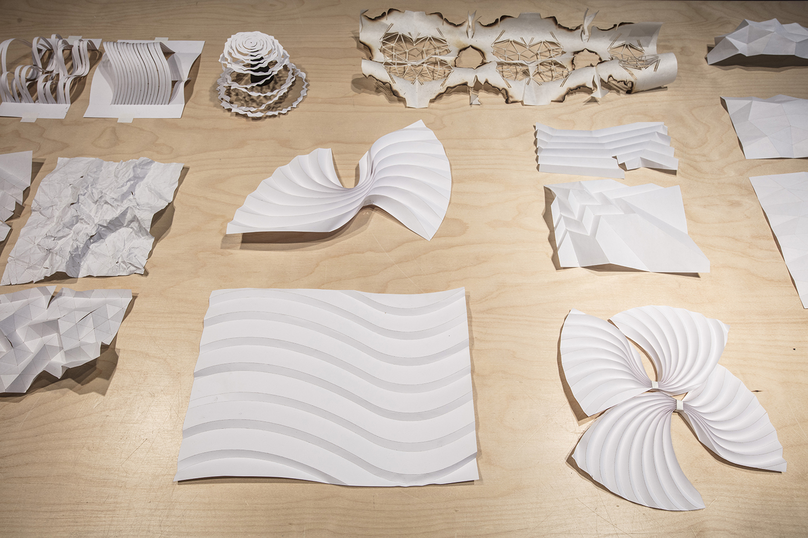 ©, Pavitra Wickramasinghe, Coral bones/La mer, Models for Meteors