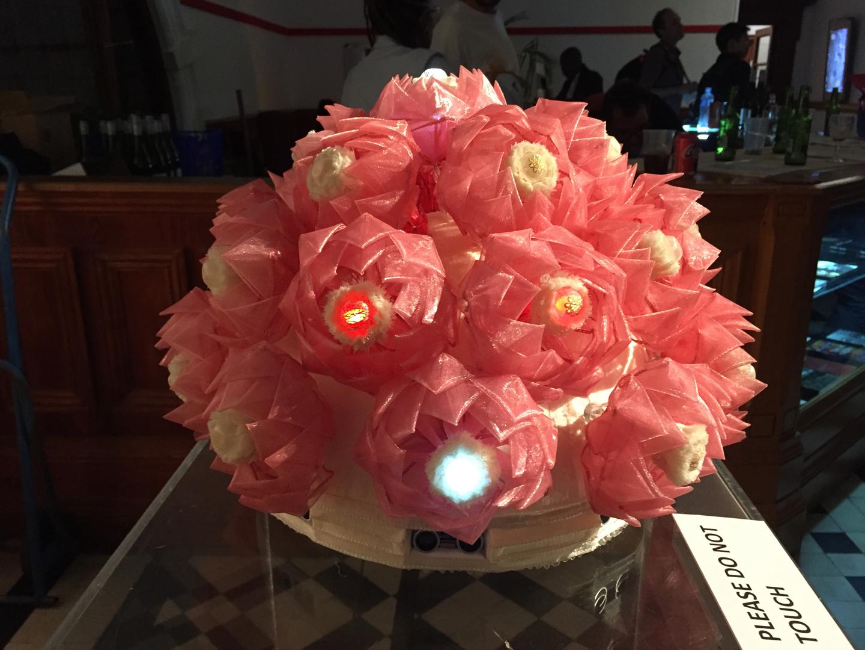 ©, Hyojin Jang, Jinsil Hwaryoung Seo, and Pilwon Hur, Lotus Flower
