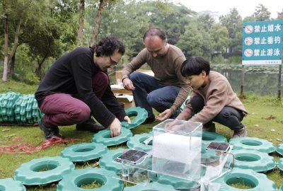 2016 Castellanos Office of Environmental Experiments